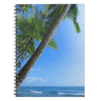 Palmas de coco cuaderno