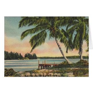 Palmas de coco del vintage tarjeta de felicitación