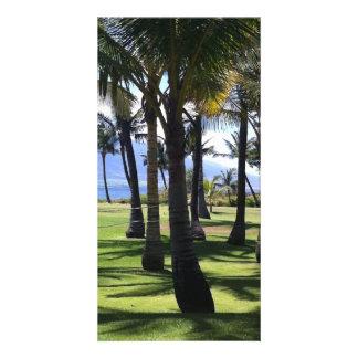 Palmas de coco Nui Hawaii Tarjetas Con Fotos Personalizadas