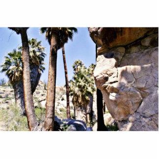 Palmas de fan de California, oasis perdido de las  Fotoescultura Vertical