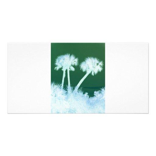 Palmas de la nieve tarjetas personales con fotos