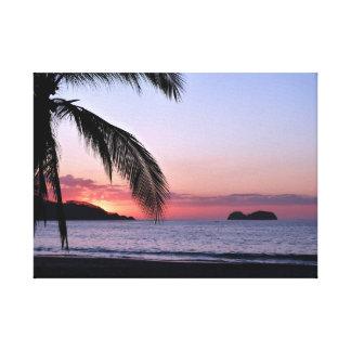 Palmas de la puesta del sol de la playa de Playa H Lona Envuelta Para Galerías