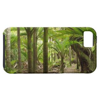 Palmas de Nikau, pista de Heaphy, cerca de Funda Para iPhone 5 Tough