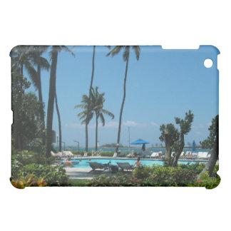 Palmas del centro turístico de México, piscina y m