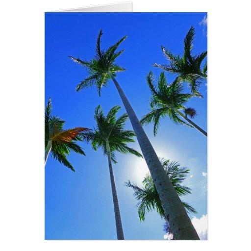 Palmas hawaianas tarjeta de felicitación