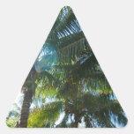 Palmas tropicales encendidas por el sol