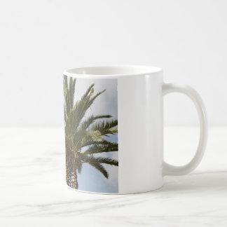 Palme1 Tazas De Café