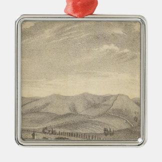 Palmer res, vineyard ornaments