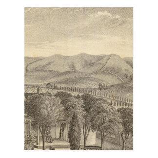 Palmer res, vineyard post card