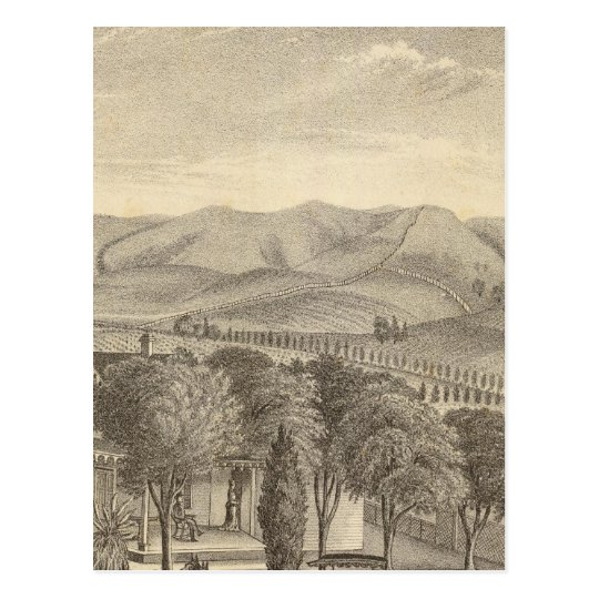 Palmer res, vineyard postcard