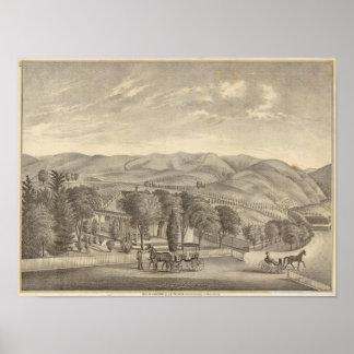 Palmer res, vineyard print