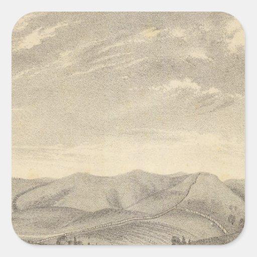 Palmer res, vineyard square sticker