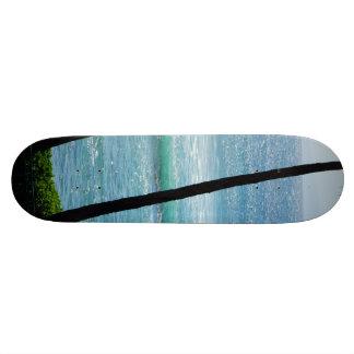 Palmera con las ondas en un monopatín tablas de patinar