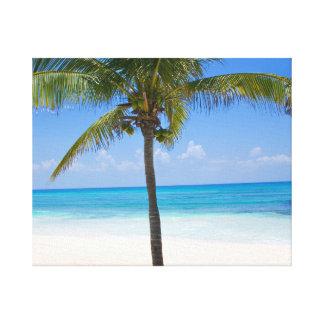 Palmera de Bahamas Impresion En Lona
