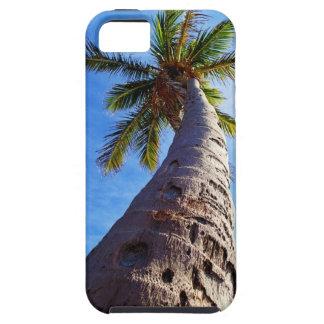 Palmera de la Florida iPhone 5 Carcasa
