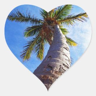 Palmera de la Florida Pegatina En Forma De Corazón