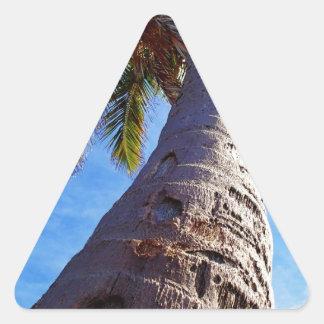 Palmera de la Florida Pegatina Triangular