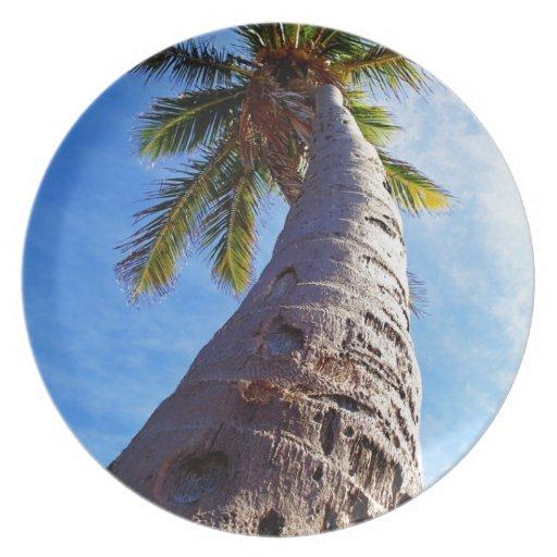 Palmera de la Florida Platos