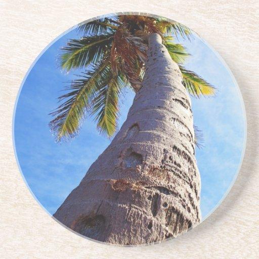 Palmera de la Florida Posavasos Diseño