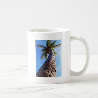 Palmera de la Florida Taza
