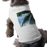 Palmera de Tailandia Camisa De Perrito