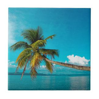 Palmera del coco en la playa tropical del paraíso tejas  ceramicas