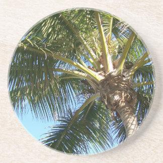 Palmera del coco posavasos manualidades