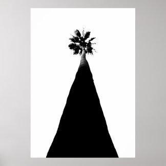 Palmera en California Posters