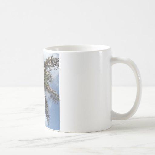 Palmera en la laguna azul taza clásica