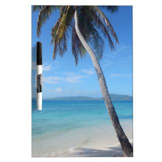Palmera en la playa pizarras blancas de calidad