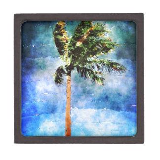 Palmera en una tormenta tropical cajas de recuerdo de calidad