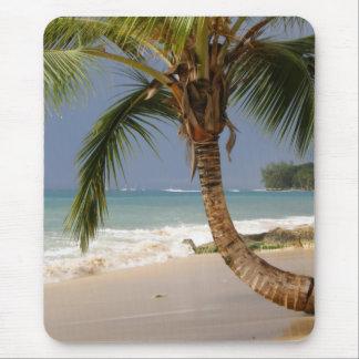 palmera exótica en la playa alfombrilla de ratón