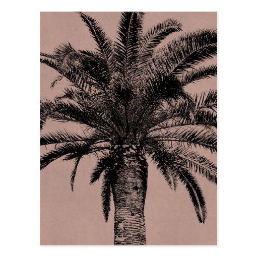 Palmera hawaiana retra - plantilla de las palmas tarjetas postales