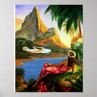 Palmera hawaiana tropical del avión de mar del vin posters