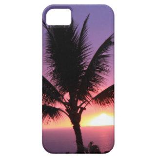 Palmera hawaiana y puesta del sol colorida iPhone 5 carcasa