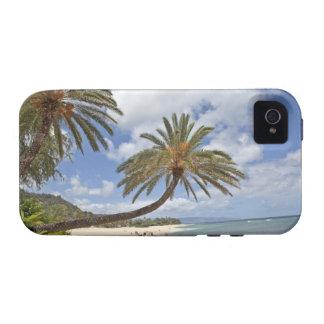 Palmera que se inclina hacia fuera sobre la arena  vibe iPhone 4 carcasa