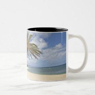 Palmera que se inclina hacia fuera sobre la arena  taza de café