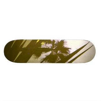 palmera tabla de skate