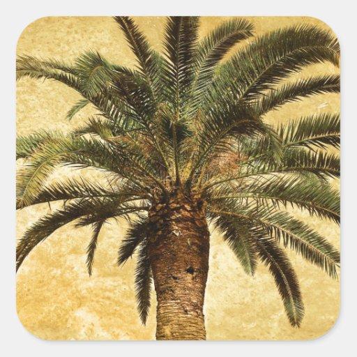 Palmera tropical del vintage colcomanias cuadradass