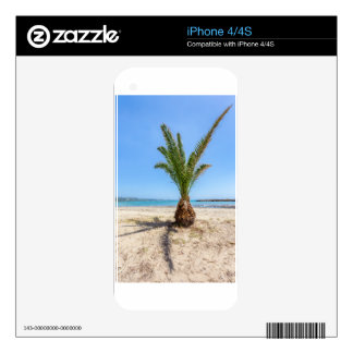 Palmera tropical en la playa arenosa skins para iPhone 4