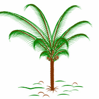 Palmera tropical imán fotoescultura