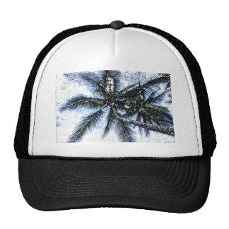 Palmera tropical gorras de camionero