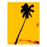 Palmera tropical postal