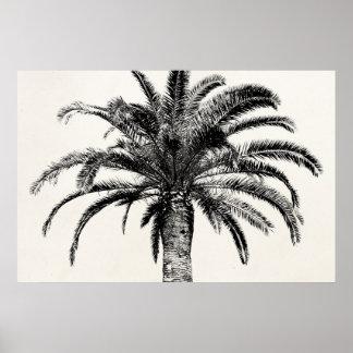 Palmera tropical retra de la isla en blanco y negr póster