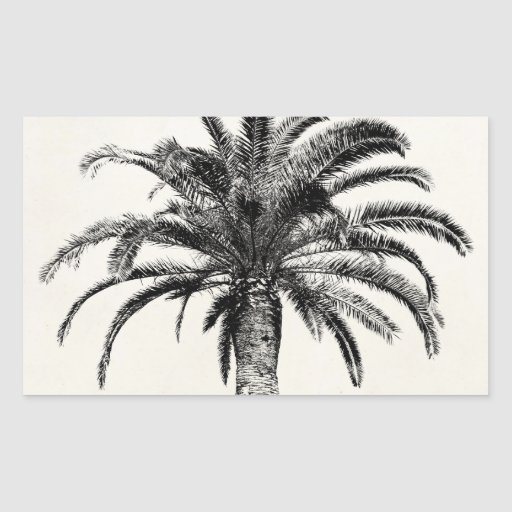 Palmera tropical retra de la isla en blanco y rectangular pegatinas