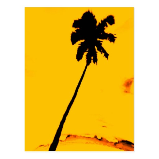 Palmera tropical tarjeta postal