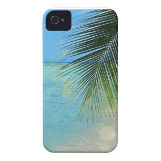 Palmera tropical y océano del Caribe Case-Mate iPhone 4 Cárcasas