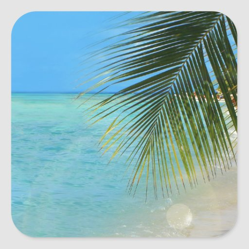 Palmera tropical y océano del Caribe Pegatina Cuadrada