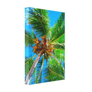 Palmera Vanuatu del coco de la lona el | Impresion De Lienzo