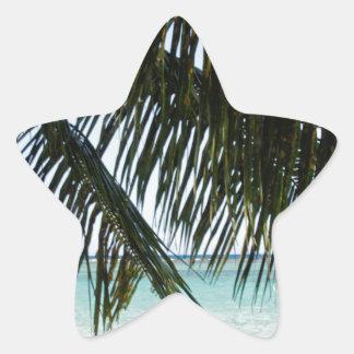 palmera y playa pegatina en forma de estrella
